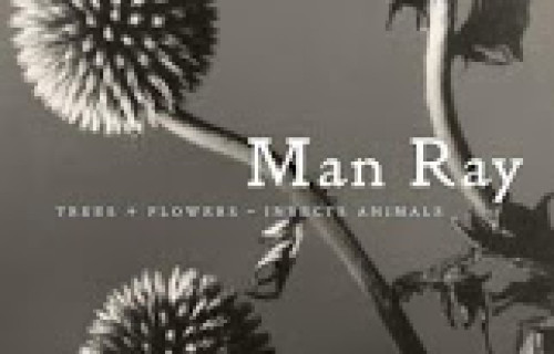Man Ray: Trees + Flowers – Insects Animals