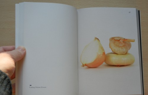 Elad Lassry, On Onions