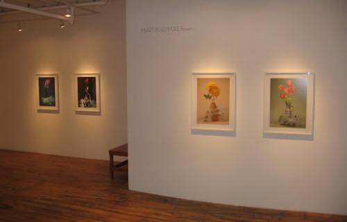 Martin Klimas, Flowers @Foley