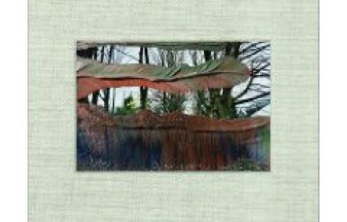 Gerhard Richter, Overpainted Photographs