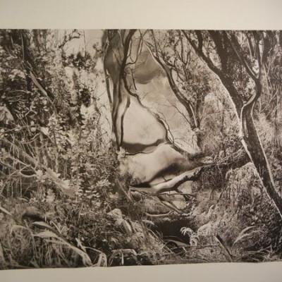 Sadie Wechsler @Aperture Gallery