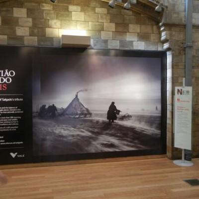 Sebastião Salgado @Natural History Museum (London)