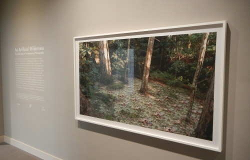 An Artificial Wilderness: The Landscape in Contemporary Photography @Wadsworth Atheneum