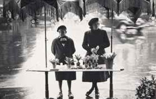 Auction Results: Agathe Gaillard et La Photographie, November 14, 2013 @Christie's Paris