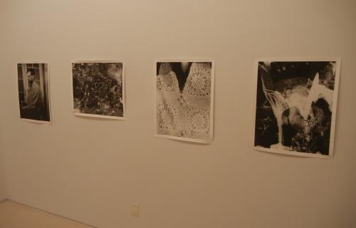 Eileen Quinlan, Curtains @Miguel Abreu