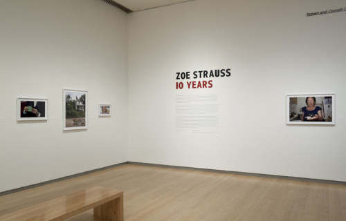 Zoe Strauss: 10 Years @ICP