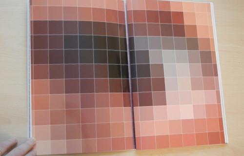 Anouk Kruithof, Pixel-Stress