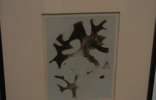 Brain Map @MoMA