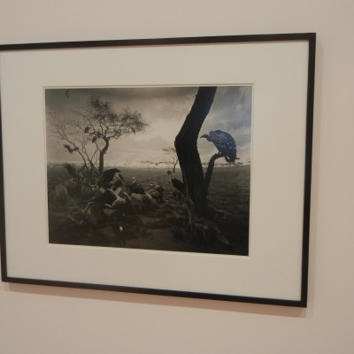 Hiroshi Sugimoto @MoMA