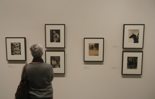 Edward Steichen in the 1920s and 1930s: A Recent Acquisition @Whitney