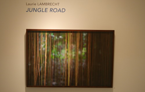 Laurie Lambrecht, Jungle Road @Rick Wester
