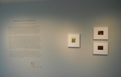 Miranda Lichtenstein: Polaroids @The Gallery at Hermès