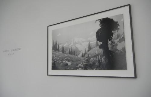 Hiroshi Sugimoto, Still Life @Pace