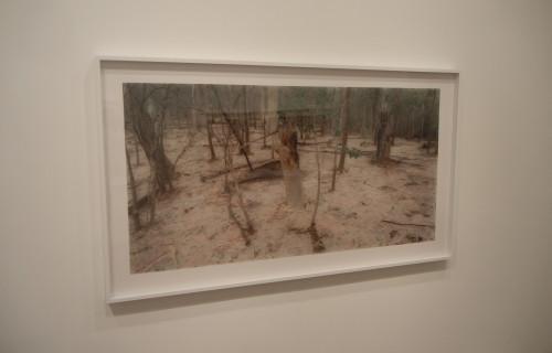 Rosemary Laing @Galerie Lelong