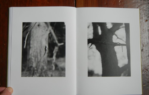 Michael Schmidt, Natur