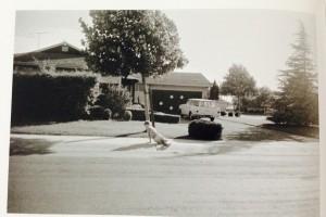 Garry Winogrand, Robert Frank, and Suburban America