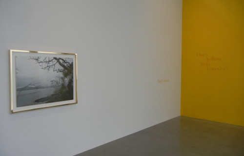 Paul Graham: Does Yellow Run Forever? @Pace and Pace/MacGill