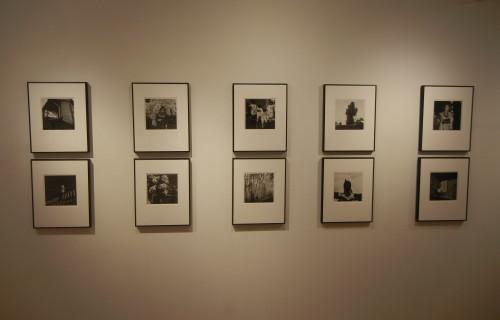 Issei Suda: Life in Flower 1971-1977 @Miyako Yoshinaga