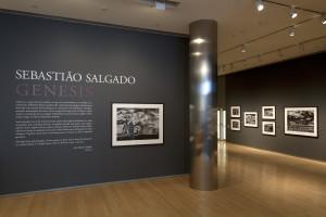 Sebastião Salgado: Genesis @ICP