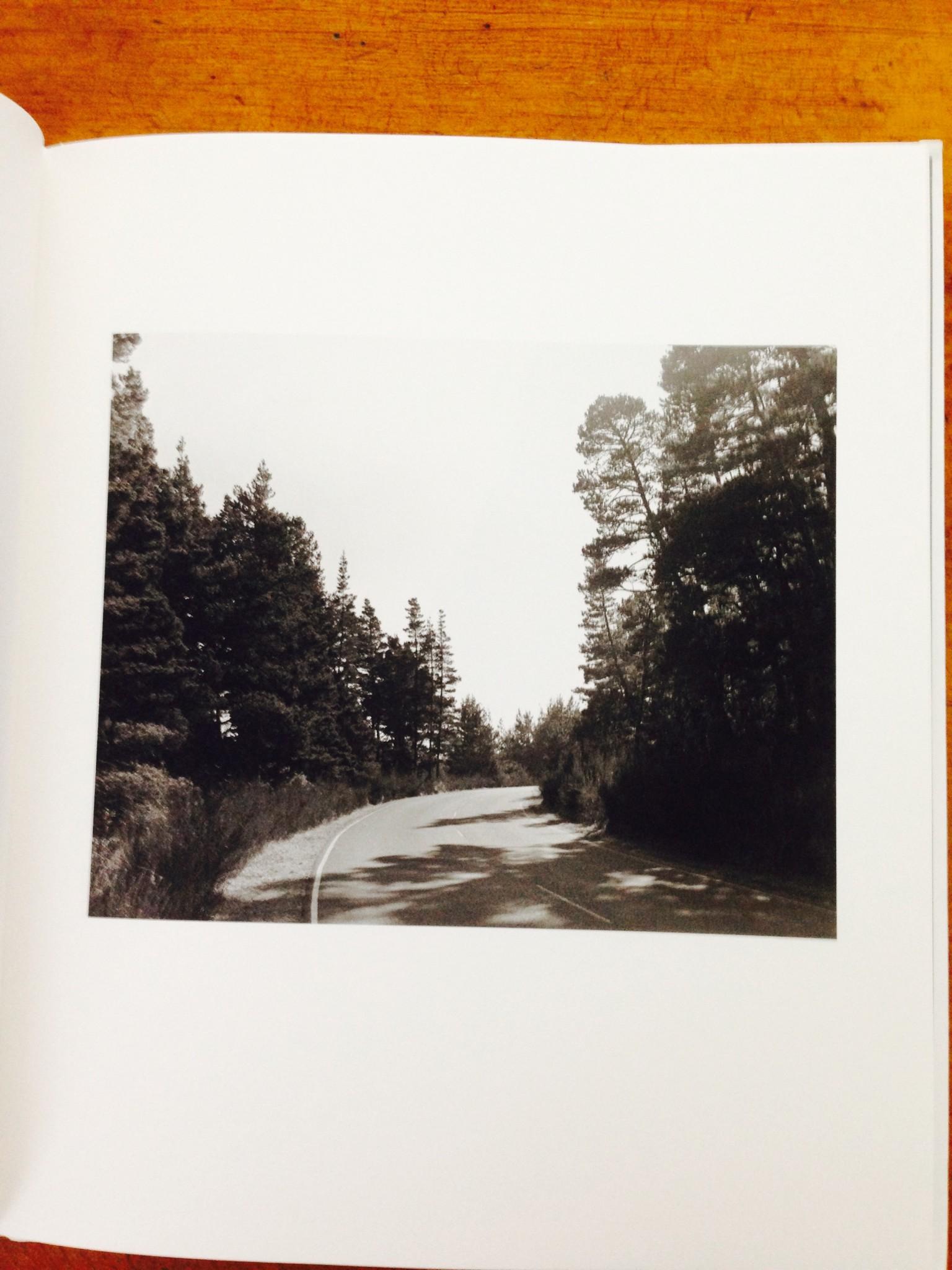 Robert Adams: A Road Through Shore Pine - Collector Daily
