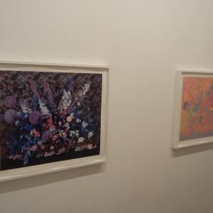 Jessica Eaton, Custom Colour @Higher Pictures
