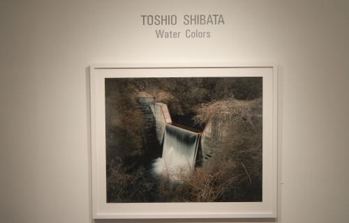 Toshio Shibata, Water Colors @Laurence Miller