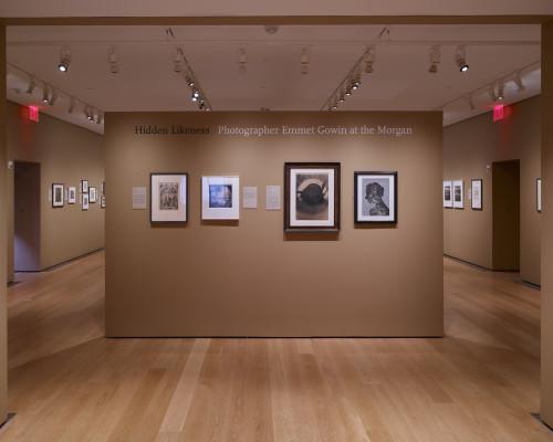 Hidden Likeness: Photographer Emmet Gowin @Morgan Library & Museum