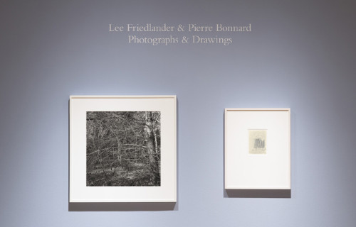 Lee Friedlander & Pierre Bonnard: Photographs and Drawings @Pace/MacGill