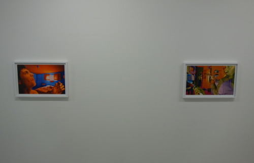 Sandy Skoglund: True Fiction Two @Ryan Lee