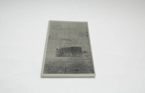 Thomas Hauser, The Wake of Dust