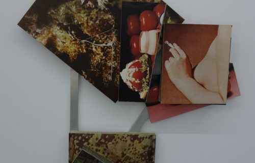 Anne Doran @Invisible-Exports