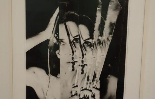 Carolee Schneemann @MoMA