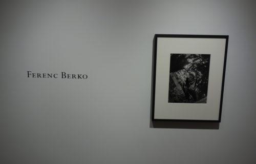 Ferenc Berko @Gitterman