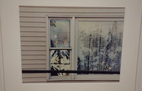 Rachel Harrison @MoMA