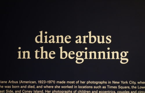 Diane Arbus: In the Beginning @Met Breuer