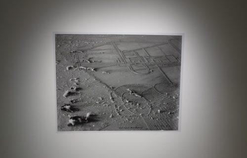 A Handful of Dust @Pratt Photography Gallery