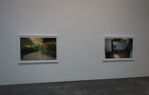 William Eggleston: Selections from The Democratic Forest @David Zwirner