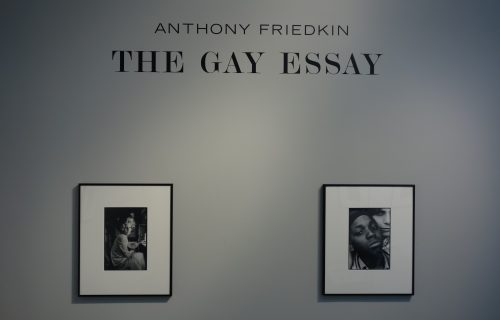 Anthony Friedkin, The Gay Essay @Daniel Cooney