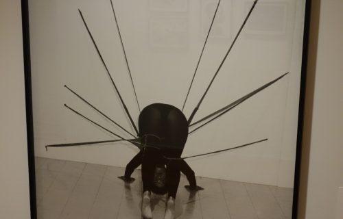 Senga Nengudi @Studio Museum in Harlem
