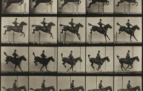 Eadweard Muybridge @Sotheby's