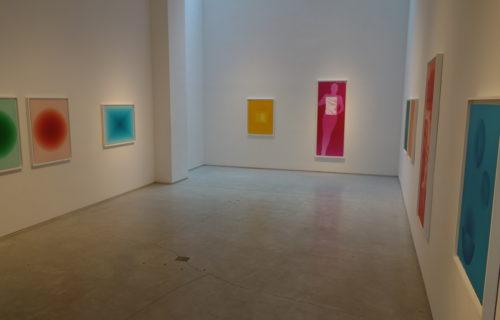 David Benjamin Sherry, Pink Genesis @Salon 94 Bowery