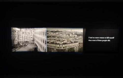 Michel Houellebecq: French Bashing @Venus Over Manhattan