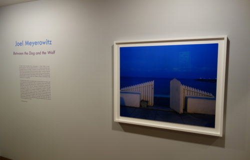 Joel Meyerowitz, Between the Dog and the Wolf @Howard Greenberg