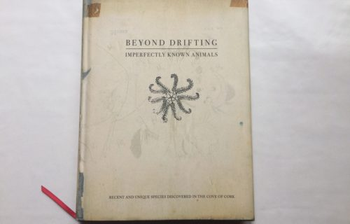 Mandy Barker, Beyond Drifting: Imperfectly Known Animals