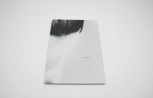 Małgorzata Stankiewicz, Cry of an echo