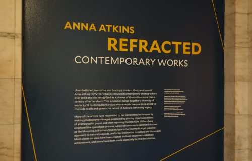 Anna Atkins Refracted: Contemporary Works @New York Public Library
