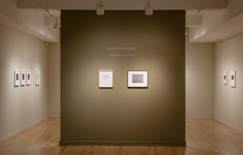 Harry Callahan: Sticks and Stones @Pace/MacGill
