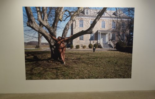 Nona Faustine @Higher Pictures