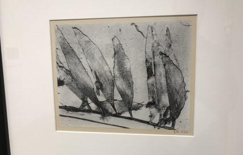 Edward Weston @Bruce Silverstein