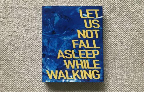 David Denil, Let Us Not Fall Asleep While Walking